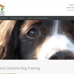 Web design for Wickwar Dog trainers, Celestine Dog training